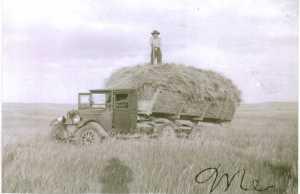 Gram on the hay wagon